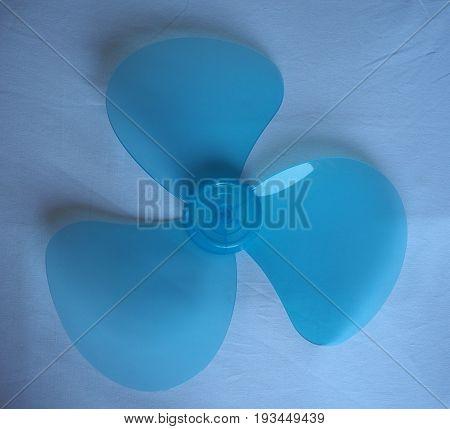 Blue Fan Detail