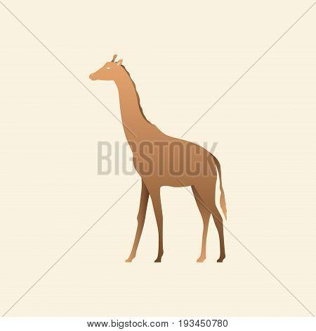 Silhouette of a giraffe. Giraffe side view profile. Vector illustration.