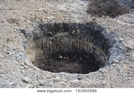 Tree organic fertilization Compost in digging hole. Organic fertilizer for tree planting. Tutorial.