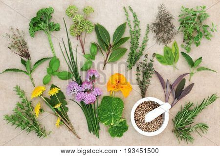 Large fresh herb selection with coriander seed in a mortar with pestle on hemp paper background. High in antioxidants and vitamins. Top view.