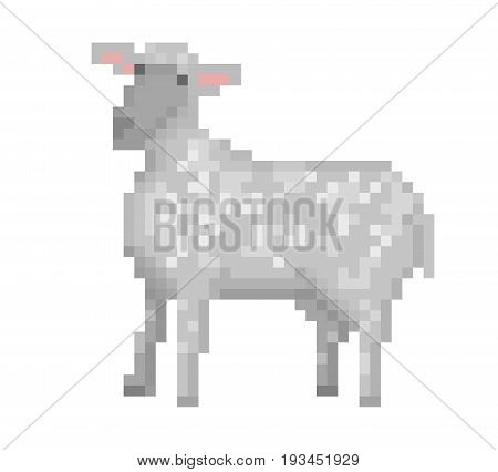 Old school 8 bit pixel art gray sheep standing on the ground. Domestic farm animal icon isolated on white background. Aries symbol. Lamb emblem. Retro video/pc game character. Slot machine graphics.