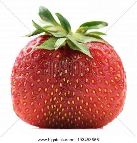 Imperfect organic fresh ripe heirloom strawberry isolated closeup
