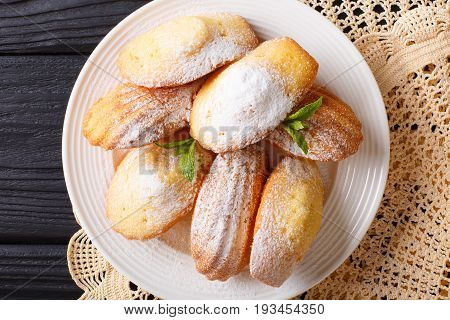Madeleine's Biscuit With Powdered Sugar And Mint Closeup On A Plate On The Table. Horizontal Top Vie
