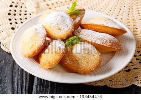 Classic Cookies Madeleine With Mint Closeup On On A Table. Horizontal