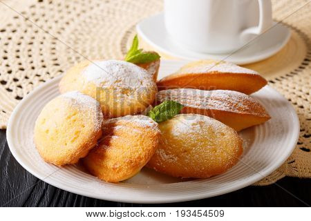 Beautiful Pastry Madeleine With Mint And Tea Close-up. Horizontal