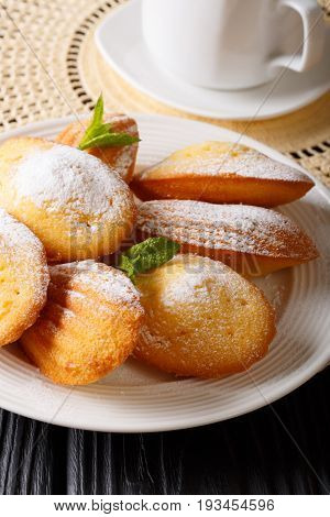 French Breakfast: Madeleine Cookies With Mint And Coffee Close-up. Vertical