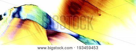 Microcrystals Of Tartaric Acid In Polarized Light