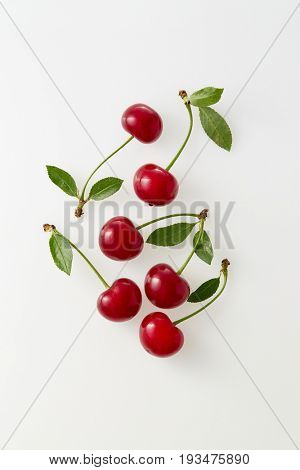 Sour cherries on white background. Fresh red cherries with stems and leaves. Organic sour cherry, ripe.