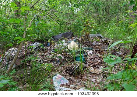 Garbage dump in forest. Environmental issue pollution of the surrounding nature.