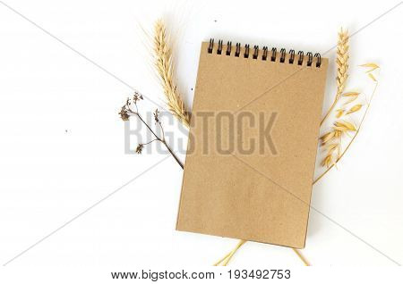 Mock up of craft paper notepad on white background with dry earls of rye wheat and oats. Top view.