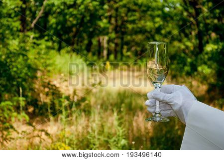 A waiter's hand in a white glove and with a white napkin holds an empty glass narrow tall champagne glass on a blurred background of nature green bushes and trees
