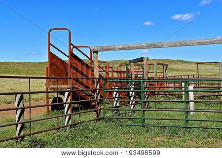A portable loading chute for beef cattle its adjacent to an empty metal coral at a western ranch.