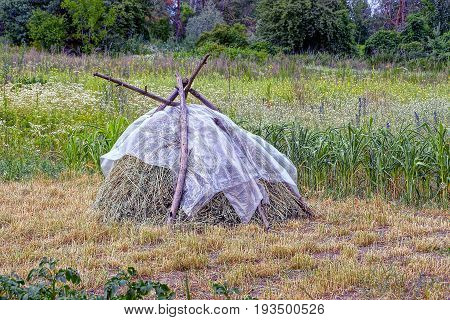 A haystack on a beveled meadow under a cellophane film