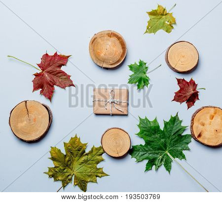 Autumn Leaves And Gift Box