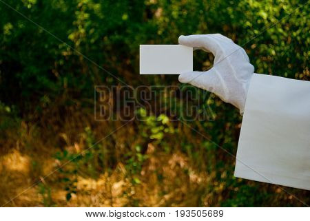 Hand of a waiter in a white glove and holding a white napkin holding a rectangular white paper business card a sign on a blurred background of nature green bushes and trees
