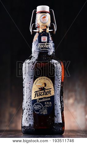 Bottle Of Fischer Traditionr Beer