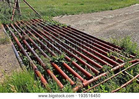 A metal grated cattle guard crossing in the western prairies