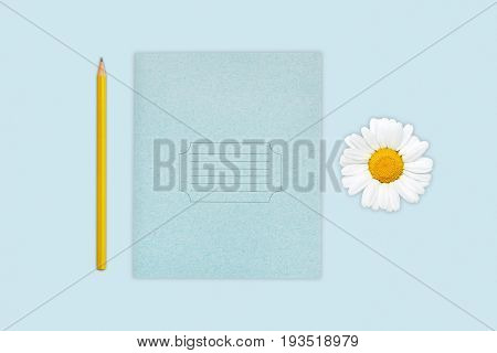 Portrait Of Copybook, Pencil And Camomile Isolated Over Blue Background. Pupil`s Equipment. Photo Of