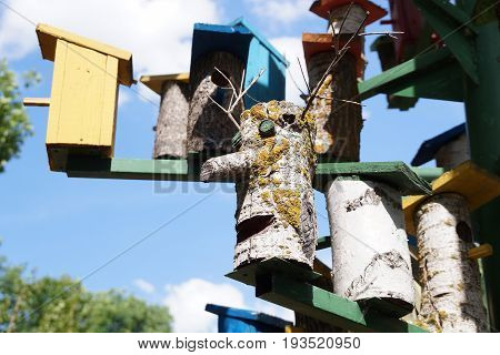 Lodge for birds - a nesting box on tourist base about Volgograd