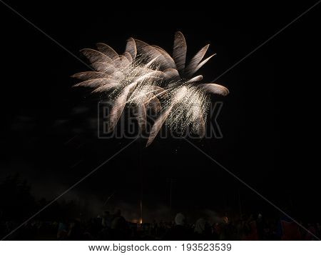 Flower Petal Shaped Fireworks Glowing In The Night Sky