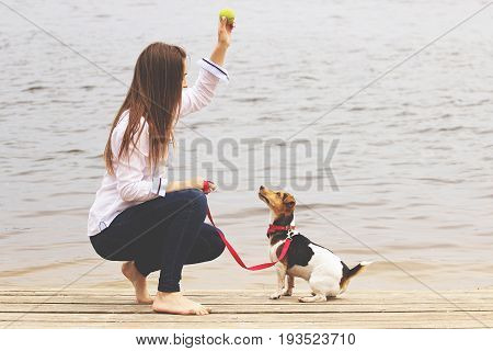 Playing With Lovely Pet. Horizontal Shot Of Beautiful Young Woman In Casual Wear Keeping Hand With B