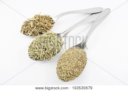 Spoons with condiments as rosemary tarragon and thyme on a white background.
