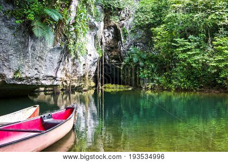 One area of the Simar Caves jungle area in Guatemala.