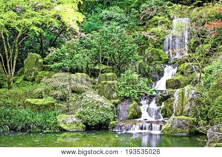 Small waterfall flowing into a koi pond in a Japanese garden.