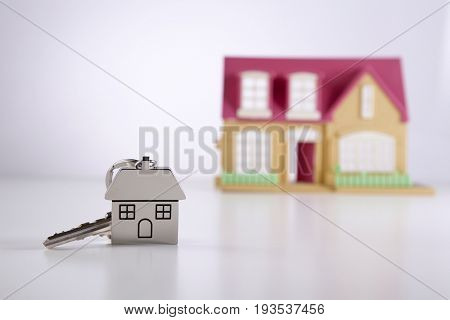 house shape key ring with mini model house