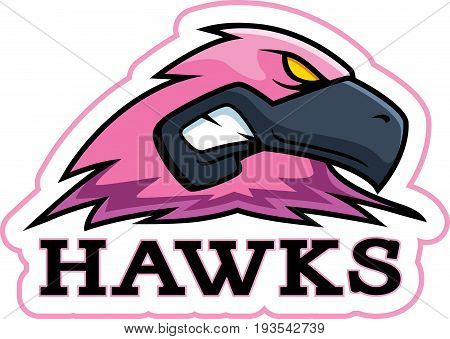Cartoon Pink Hawk Mascot