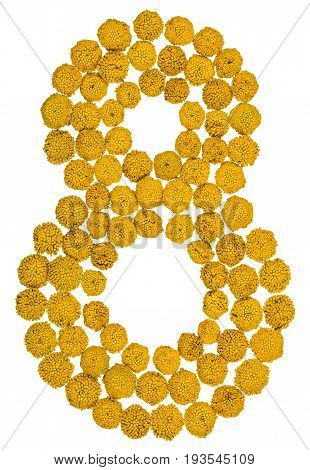 Arabic Numeral 8, Eight, From Yellow Flowers Of Tansy, Isolated On White Background