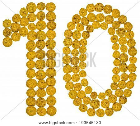 Arabic Numeral 10, Ten, From Yellow Flowers Of Tansy, Isolated On White Background
