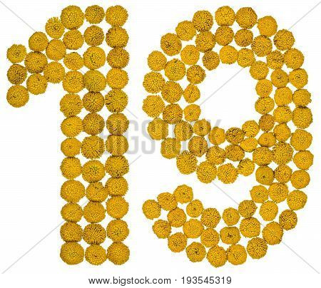 Arabic Numeral 19, Nineteen, From Yellow Flowers Of Tansy, Isolated On White Background