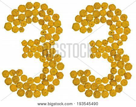 Arabic Numeral 33, Thirty Three, From Yellow Flowers Of Tansy, Isolated On White Background