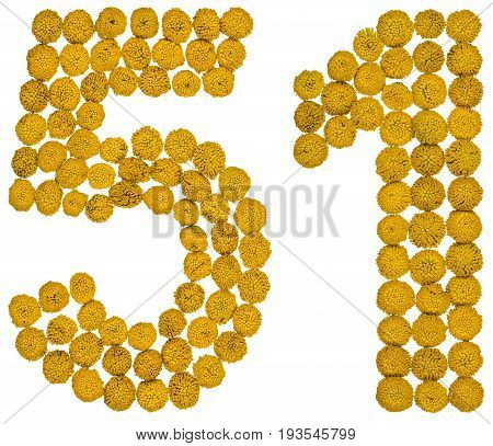 Arabic Numeral 51, Fifty One, From Yellow Flowers Of Tansy, Isolated On White Background