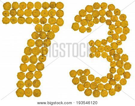 Arabic Numeral 73, Seventy Three, From Yellow Flowers Of Tansy, Isolated On White Background
