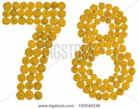 Arabic Numeral 78, Seventy Eight, From Yellow Flowers Of Tansy, Isolated On White Background