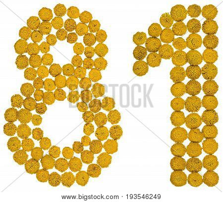 Arabic Numeral 81, Eighty One, From Yellow Flowers Of Tansy, Isolated On White Background