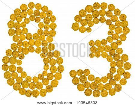 Arabic Numeral 83, Eighty Three, From Yellow Flowers Of Tansy, Isolated On White Background