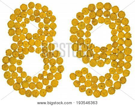 Arabic Numeral 89, Eighty Nine, From Yellow Flowers Of Tansy, Isolated On White Background