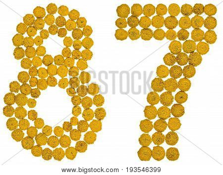 Arabic Numeral 87, Eighty Seven, From Yellow Flowers Of Tansy, Isolated On White Background