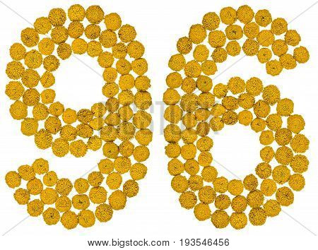 Arabic Numeral 96, Ninety Six, From Yellow Flowers Of Tansy, Isolated On White Background