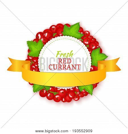 Round colored frame composed of red currant with gold ribbon. Vector card illustration. Fruit label. Circle currant berries label fruit and leaves for packaging design of detox, cosmetics cream, jam, juice