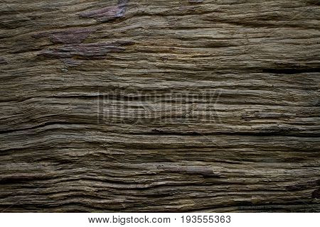 Pattern of old wood texture background, grunge and dark