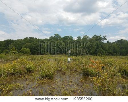 scientific measuring apparatus in a swamp or wetland