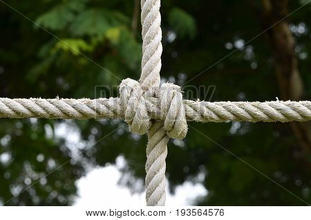 Rope knot line tied together with nature background,as a symbol for trust, teamwork, harmony or collaboration.