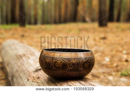 Tibetian Singing Bowl On The Tree In A Forest.