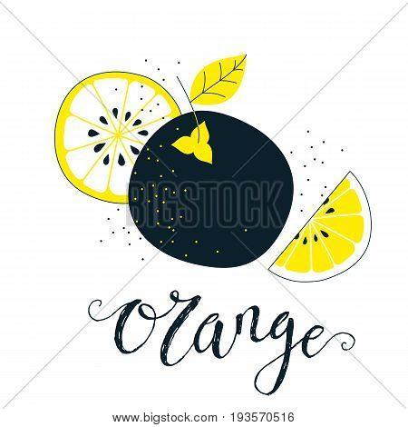 Hand drawn orange illustration with lettering. Fresh natural fruit background. Vector banner, paster, package design. Natural food market concept. Organic design