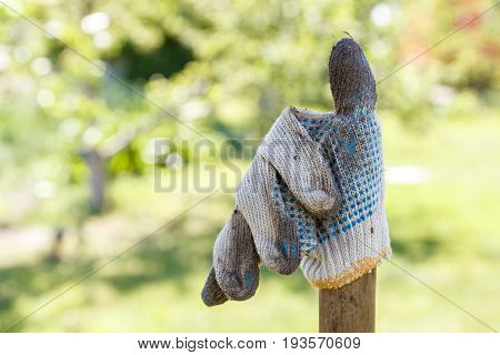 Dirty work glove against the backdrop of a garden on a summer day agricultural work