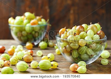 Ripe gooseberry in a glass plate and scattered next to a plate on a dark brown background space for text. Gooseberry multicolored